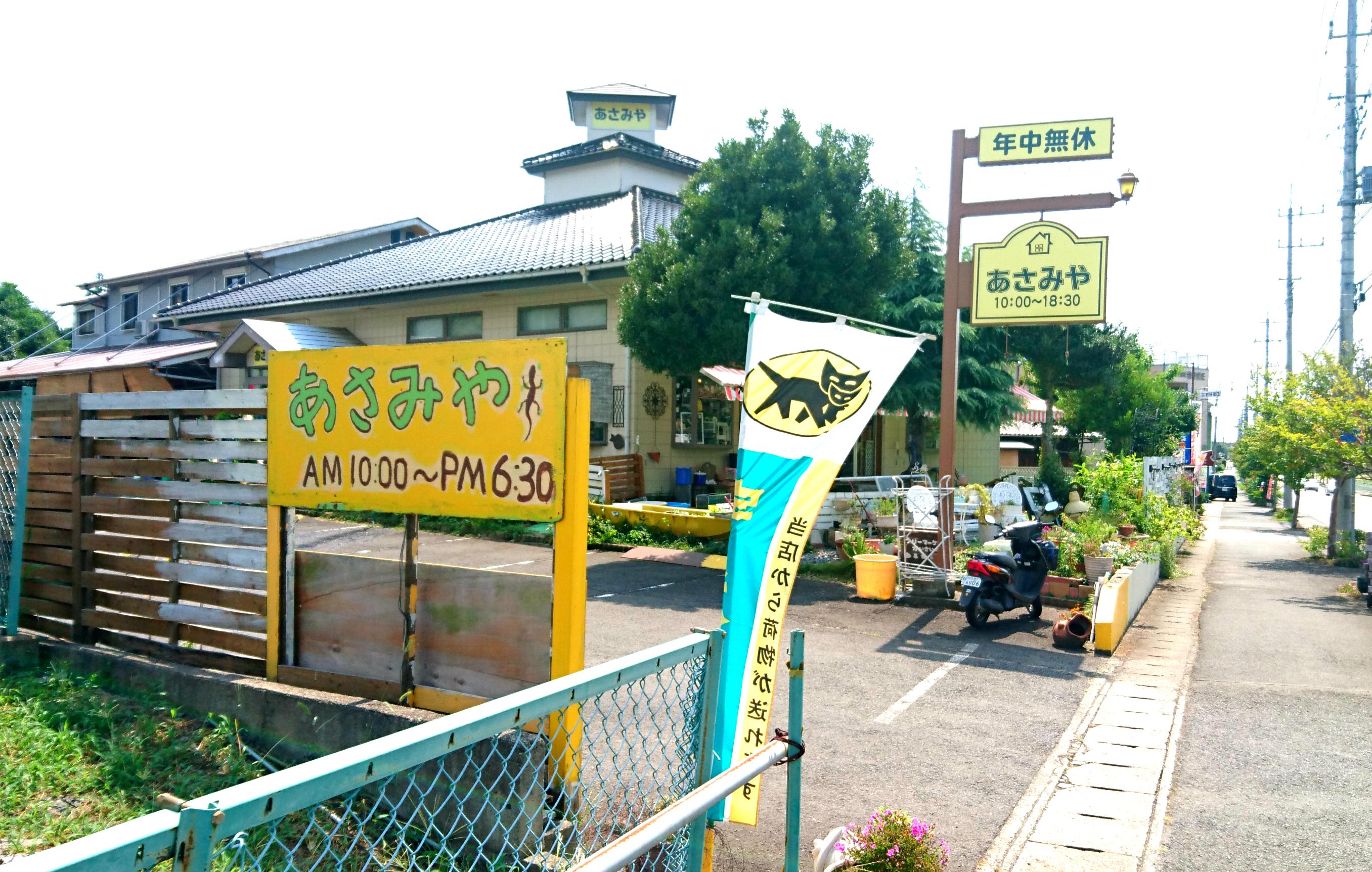出店報告「8/10 あさみやフリーマーケット」@東海村