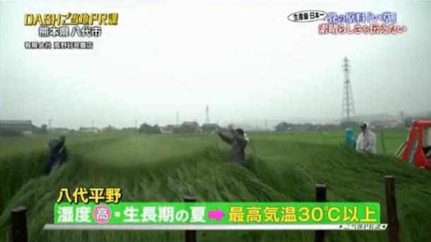 日本テレビ「ザ!鉄腕!DASH!!」で当店の動画が紹介されました。